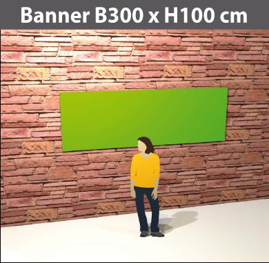 banner300x100