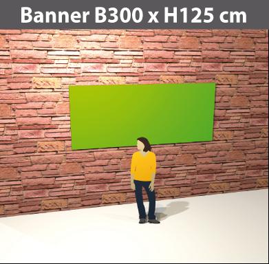 banner300x125