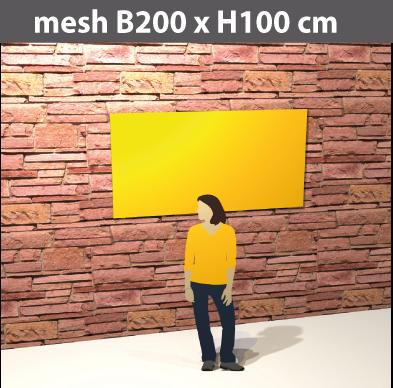 gitternetz-mesh200x100