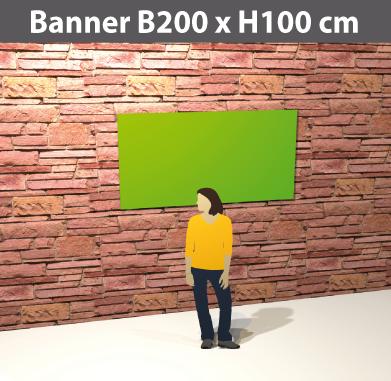 plane200x100