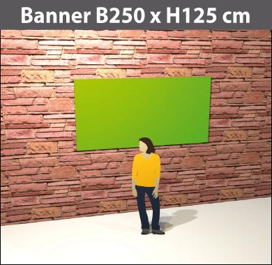 plane250x125