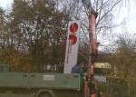 pylone_49