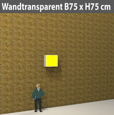wandtransparent-75x755
