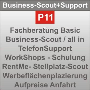 P11-BusinessScout